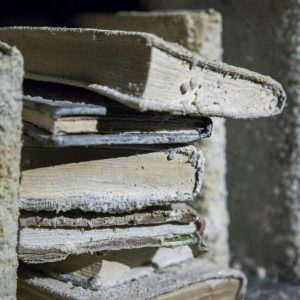 """Mahsa Aleph, """"Aleph's library"""" (Detail), installation at Pasio, 1000 cured books, iron, wood, overall size: 250 x 250 x 900 cm, 2017"""