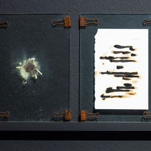 """""""page116"""" Metal clips, glass, pages of books exposed to sulfur gas, sulfur ash, 29 x 21 cm each"""