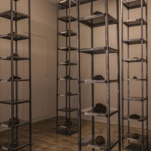 installation made of thirty-five thousand date kernel in 4 metal columns consists of 10 shelves, processed by turmeric,mold,oil,and soot